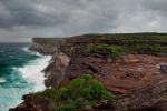 uptopRNP-eagle-rock_Panoramav3_1