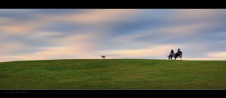 Sydney-park_Panorama22.jpgimgmax2600
