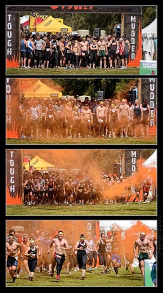 tough-mudda-triptych-start.jpgimgmax2600