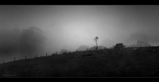 misty_Panorama1-comboyne2.jpgimgmax2600