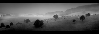 misty_Panorama1-comboyne5a.jpgimgmax2600