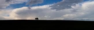 Sydney-park-storm-panorama.jpgimgmax2600