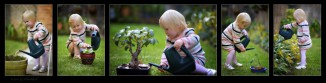 matilda-triptych-watering-garden2.jpgimgmax2600