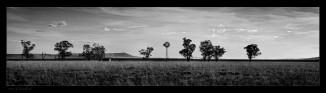 liverpool-plains-paneo_1.jpgimgmax2000