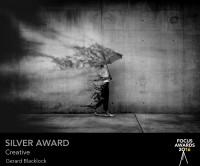award_4892_4892_3135840091-85