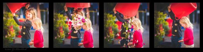 tilly-taressa-quad-tych-flowers-1.jpgimgmax2000